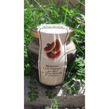 Γανοδερμα (REISHI) με μέλι ανθέων